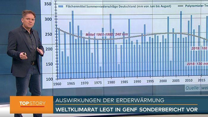 Dürre-Sommer 2019? Dramatische Folgen des Klimawandels