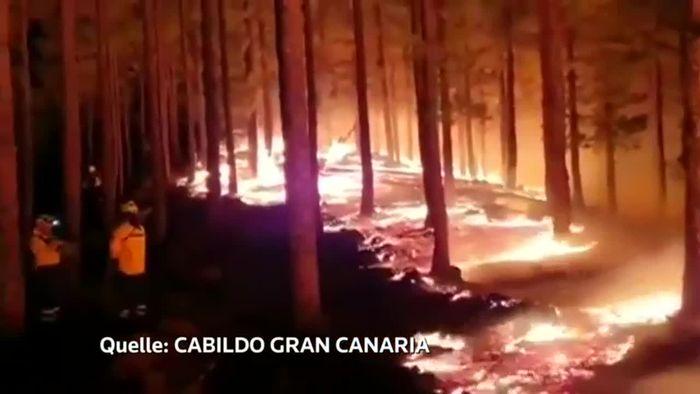 Aufatmen nach Waldbränden auf Cran Canaria