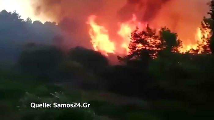 Hotels auf Samos evakuiert: Touristen müssen vor Waldbränden fliehen