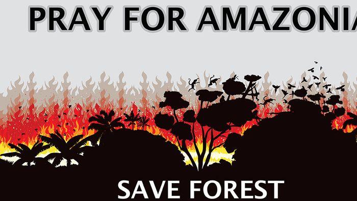 Amazonas-Katastrophe: Das Schlimmste kommt erst noch