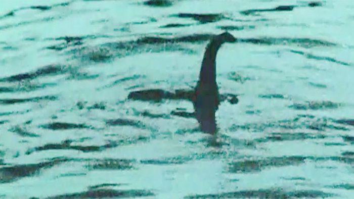 Rätsel gelöst: Monster vor Loch Ness vermutlich ein Aal