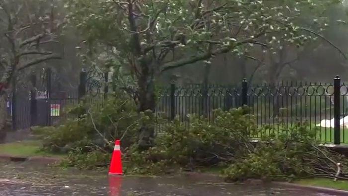 Hurrikan DORIAN zieht weiter nach Kanada