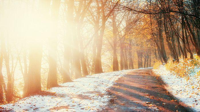 Oktober-Prognose: Erst golden - und dann schon Schnee?