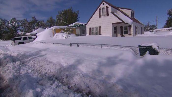 Wintereinbruch! Heftiger Schneesturm überrascht Montana