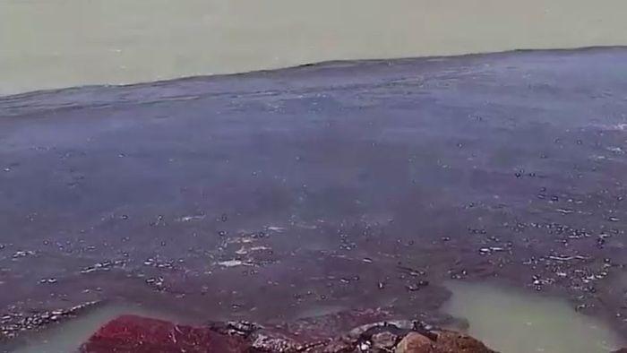 Katastrophe unbekannten Ursprungs: Ölpest verschmutzt Brasilien