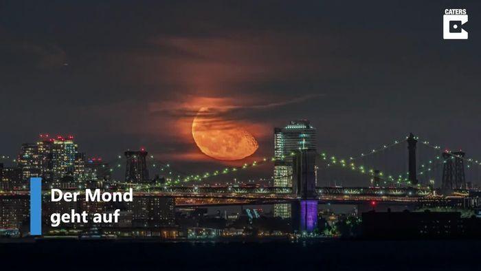 Wie ein Gemälde: Glühender Mond über New York