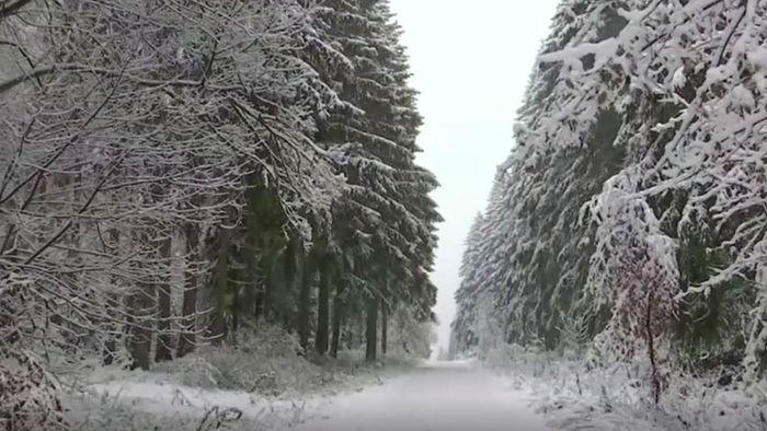 Verschneite Landschaft: Wintereinbruch in der Eifel