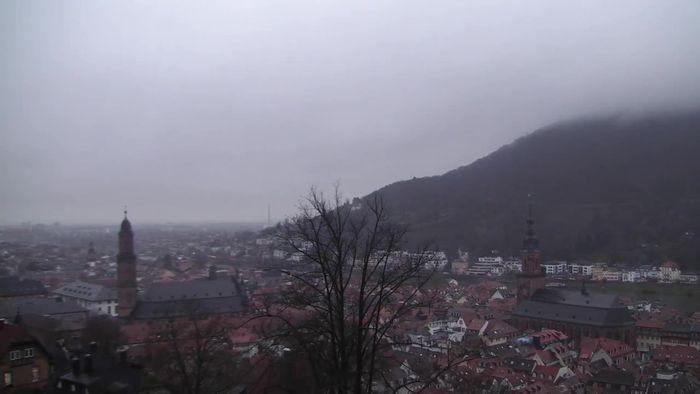 Livecam Heidelberg