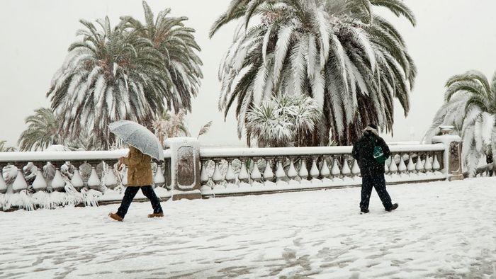 Schnee in Spanien: Verkehrte Wetterwelt