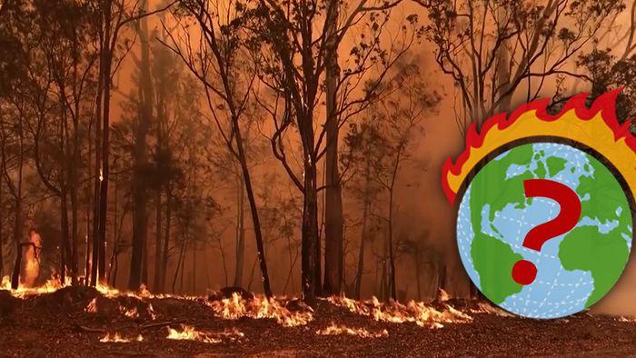 Haben Australiens Buschbrände Folgen für unser globales Klima?