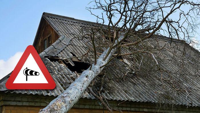 Vorsicht vor LOLITA! Sturm sorgt für Turbulenzen