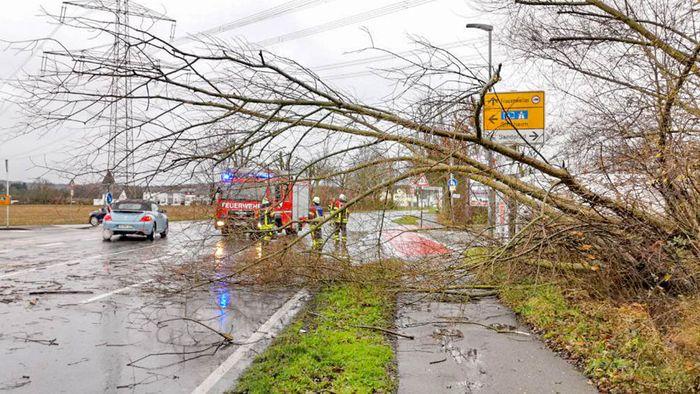 Bilanz: So tobte Sturm LOLITA über Deutschland