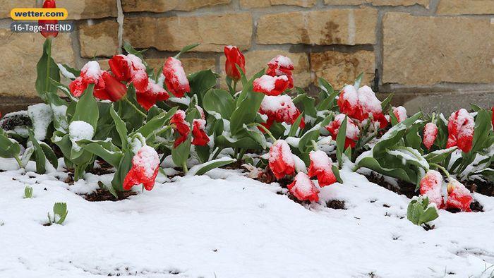 Wetter 16 Tage: Märzwinter schlägt zu