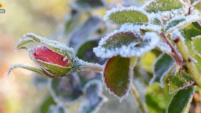 Wetter 16 Tage: Vorsicht! Winter noch nicht vom Tisch