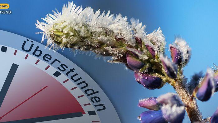 Wetter 16 Tage: Eisheilige machen Überstunden