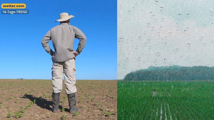 Wetter 16 Tage: 100 Liter Regen - aber nicht in Problemregionen