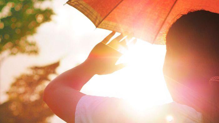 Sommerprognose: Neuer Rekord? Das spricht für einen Hitzesommer