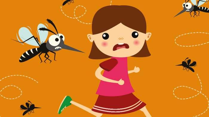 Einige Hausmittel helfen dir dabei, Mücken zu vertreiben.