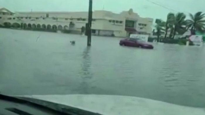 Warnung vor Sturmflut! ISAIAS nimmt Kurs auf Florida