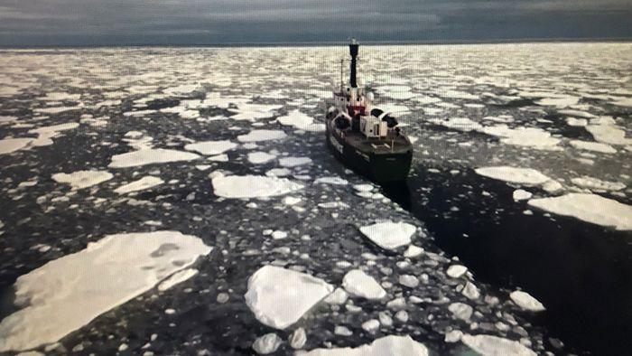 Arktis-Eis schrumpft auf zweitniedrigsten Stand seit 40 Jahren