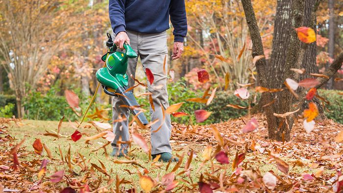 Gartenarbeit im Herbst: Das spricht gegen Laubbläser