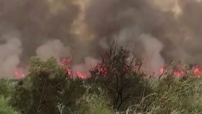 Naturschutzgebiet in Flammen! Mallorca brennt
