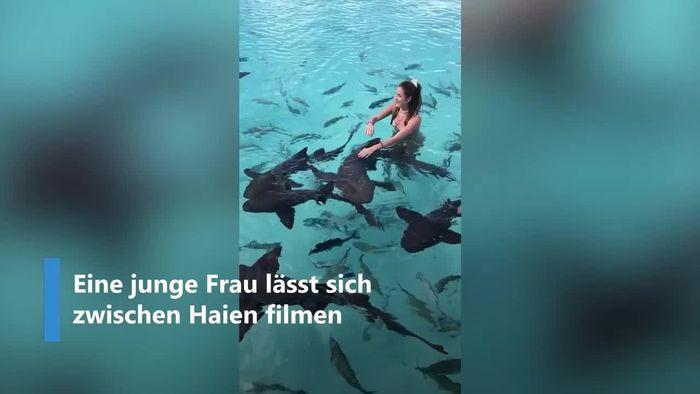 Selfie zwischen Haien: Junge Frau verliert die Nerven