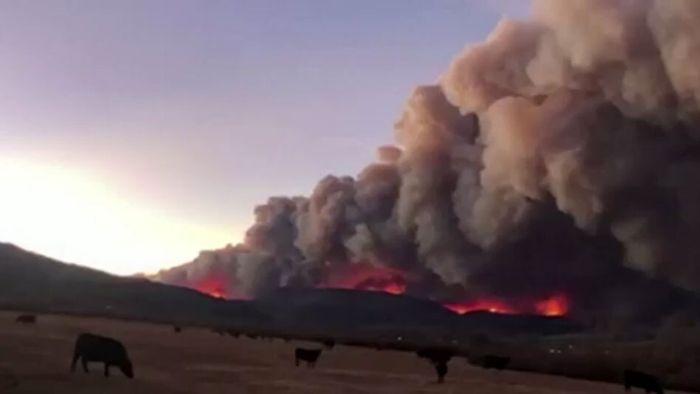 Heftige Waldbrände: Tausende Menschen auf der Flucht