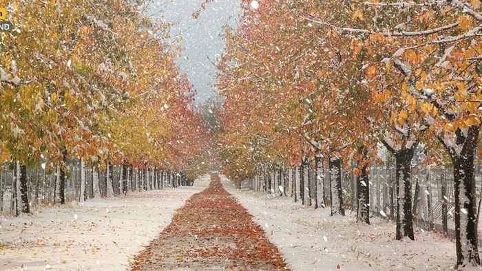 Wetter 16 Tage: Wetterlage stellt sich um - Schneechancen steigen!