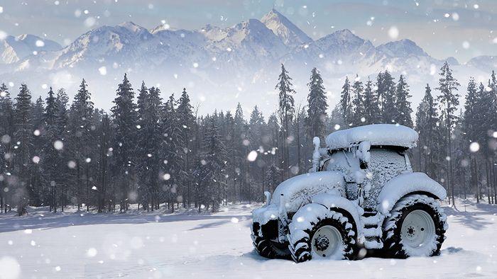 Zu weiße Weihnachten und dem Winter gibt es mehrere Bauernregeln.
