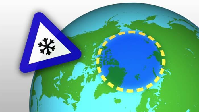 Der Polarwibrel ist ein Starkwindband.