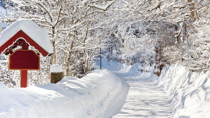 Januarprognose: Schneemassen wie 2019?