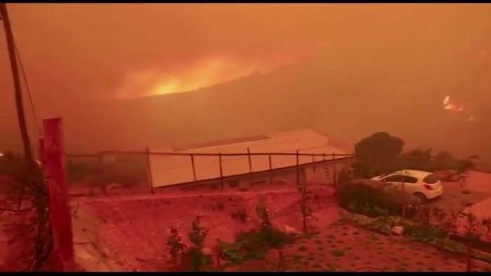 Grundstücke zerstört: Waldbrände wüten im chilenischen Valparaiso
