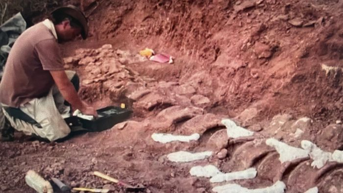 Größtes Landlebewesen aller Zeiten entdeckt?