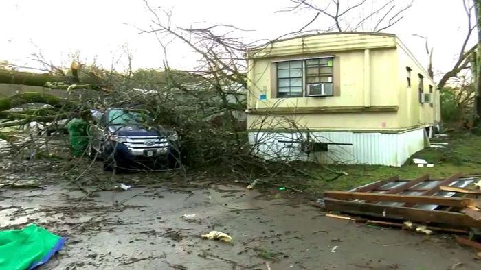 Mega-Tornado in Alabama - Hund aus Trümmern gerettet
