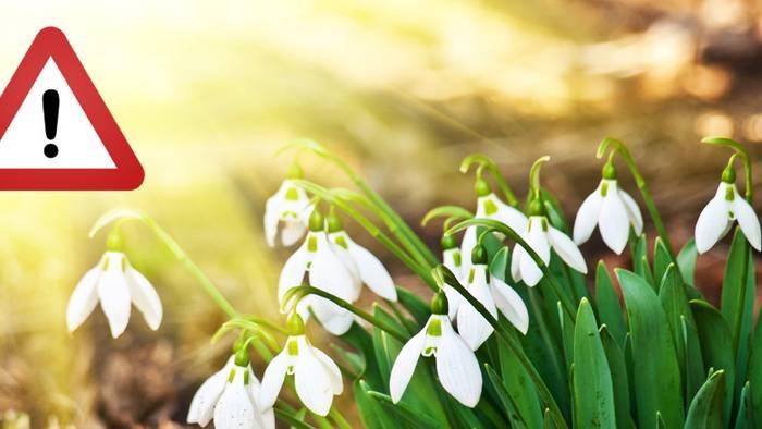 Achtung, der Frühling kommt! Das ist ab 1. März verboten