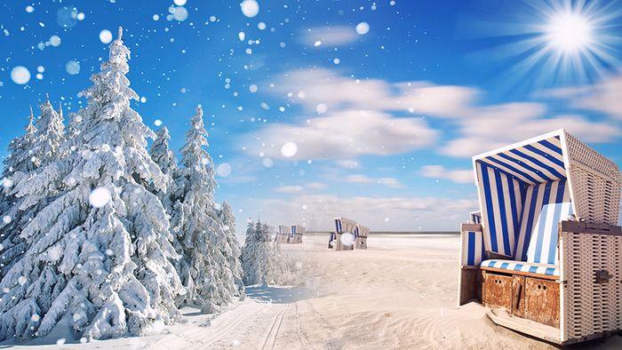 Winterliches Auf und Ab: Was bedeutet das für den Sommer 2021?