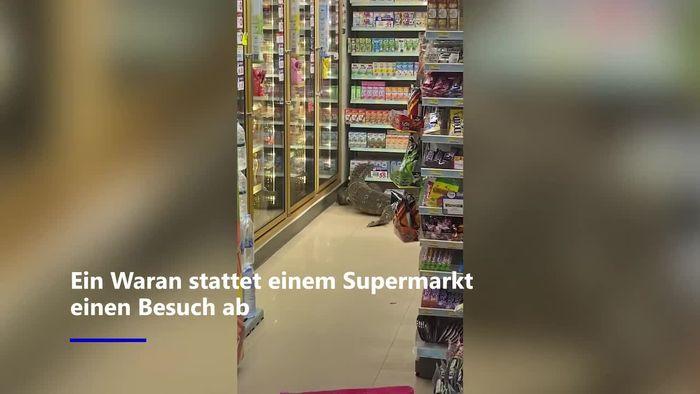 Chaos in Supermarkt: Waran klettert Regal hoch