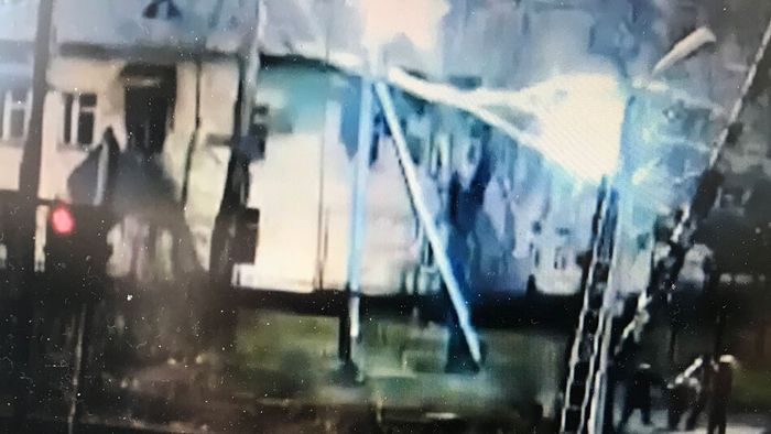 Baum fällt auf Stromleitung: Familie entkommt knapp