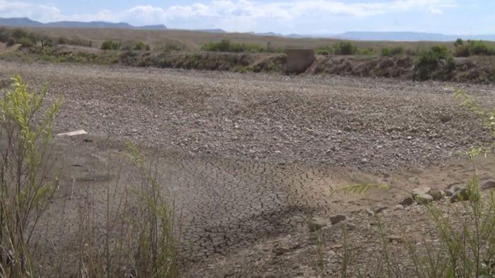 Kannibalenfische bedrohen Ökosystem: See wegen Raubfischen trockengelegt