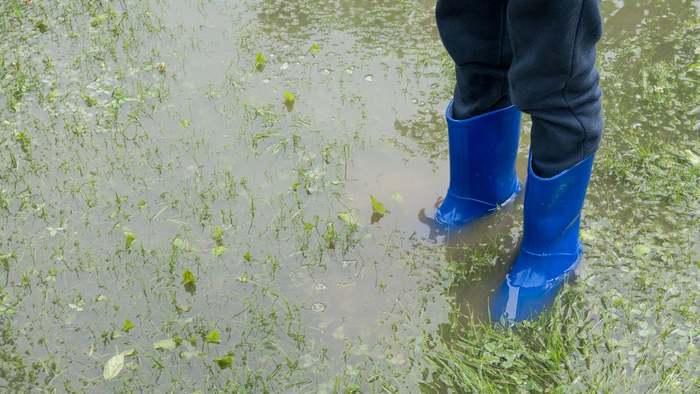 Stark- und Dauerregen kann deinem Garten schaden.