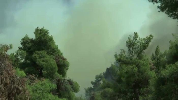 Waldbrände nahe Athen - Sorge vor erneutem Feuerinferno