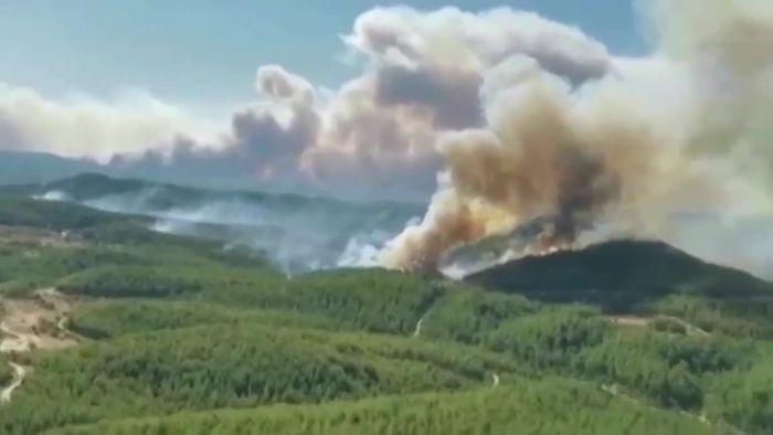Tote bei Waldbränden in türkischer Urlaubsregion