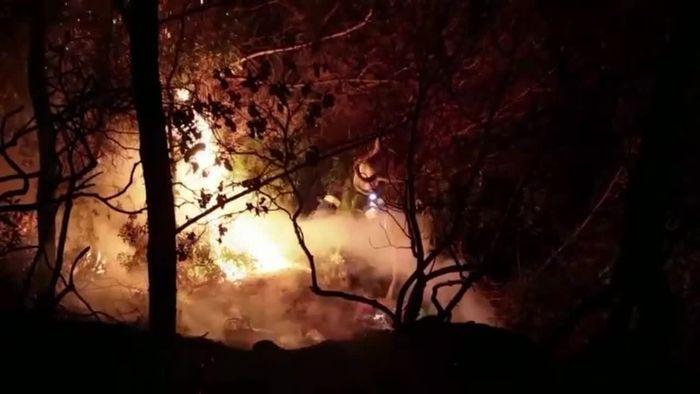 Griechische Feuerwehr kämpft gegen verheerenden Waldbrand