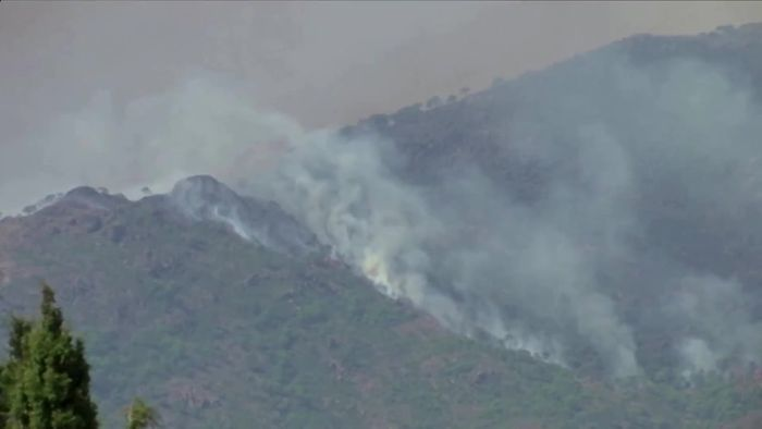 Großbrand in Spanien: Menschen fliehen vor den Flammen