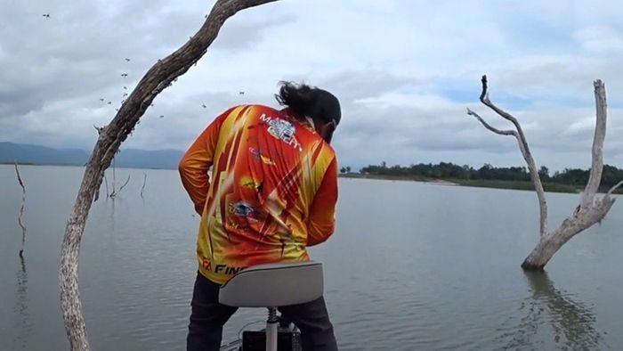 Angler trifft auf Hornissennest - da gibt es nur einen Ausweg