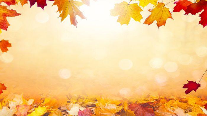 Wetter 16 Tage: Chancen auf goldenen Oktober steigen